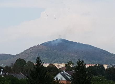 Гора Ловачка в Мукачеві, знову горить