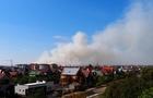 За Ужгородом підпалили траву - все місто у диму