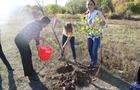 Місто майбутнього своїми руками та нові дерева на «Кірпічці»: в Ужгороді провели акцію «Місто без СО2»
