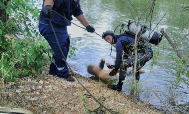 На Берегівщині в річці знайшли тіло утопленика