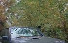 Трагедія на Закарпатті: На кладовищі шлагбаум пробив лобове скло автомобіля і вбив людину