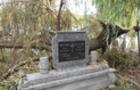 У Берегові напередодні Дня пам'яті за померлими на могили впало дерево (ФОТО)