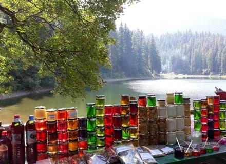Хто відповість за отруту, яку продають біля Синевирського озера