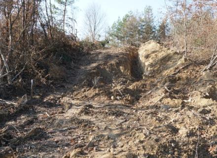 Закарпатські лісівники спростовують скандал навколо таємного нафтопроводу Кремля (ВІДЕО)