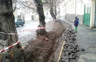 В Ужгороді біля древнього замку знищують дерева (ФОТО)