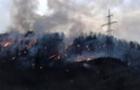 Лісова пожежа поблизу Сусково виникла через спалювання трави