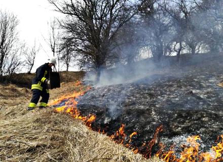 Від початку року на Закарпатті сталося вже понад 100 пожеж в екосистемах на площі 100 гектарів