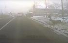 Курйоз: Поблизу центра Ужгорода під колеса автомобіля потрапив олень (ВІДЕО)