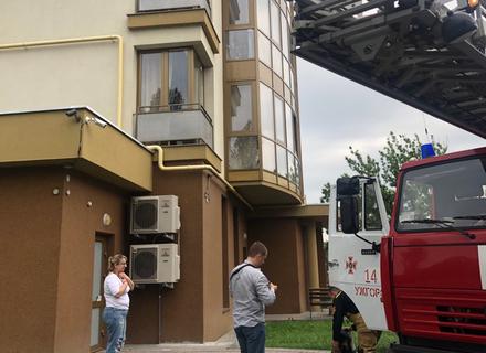 Як співробітники ДСНС рятували кота в Ужгороді (ВІДЕО)