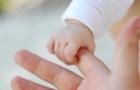 Коли в сім`ї народилася дівчина - поради від закарпатського психолога