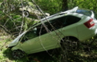 Нетверезий закарпатець скоїв у Словаччині ДТП на краденому авто