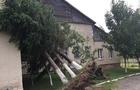 Обласна влада порахувала, на яку суму завдав збитків буревій