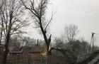 Стихія на Закарпатті: Підтоплення і зламані дерева (ФОТО, ВІДЕО)