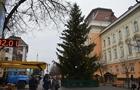 На Закарпатті почали прикрашати першу в Україні Новорічну ялинку