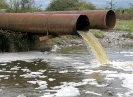 Офіційно: Біля Мукачева у Латориці риба загинула через викид з каналізації стічних вод