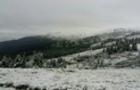 На Закарпатті в горах випав сніг (ФОТО)