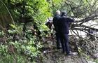 Рятувальники таки підтвердили інформацію про смерть хлопчика, який упав у річку на Воловеччині