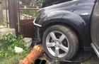 Трагедія на Ужгородщині: Через п'яного водія загинула 11-річна дівчинка