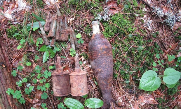 Майже півсотні боєприпасів на Закарпатті виявили туристи (ФОТО), фото-1