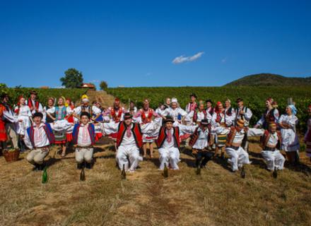 На Закарпатті створили музичний фільм про збір винограду за участі Закарпатського народного хору