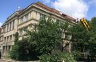 В історичній частині Ужгорода зрубали сакури, щоб відремонтувати дах на одній із будівель