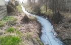 Поліція перевірить, які викиди здійснює Перечинський лісохімкомбінат у річку