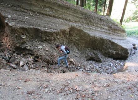 ГО Екосфера: Хочеш допомогти лісу – зроби це!