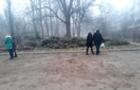 В Ужгороді непродані ялинки торговці повикидали деінде