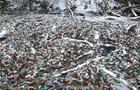 На Закарпатті на річці Боржава в заплавах накопичилося тисячі пластикових пляшок (ФОТО)
