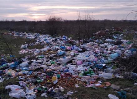 На Виноградівщині навколо сіл утворюються величезні стихійні сміттєзвалища (ФОТО)