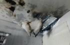На Виноградівщині загорівся магазин господарських товарів