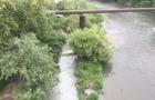 В Ужгороді в річку регулярно скидають нечистоти. Екологічна інспекція не діє (ФОТО)