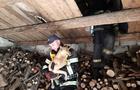 В Іршаві рятувальникам довелося рятувати собаку, яка застрягла на горищі
