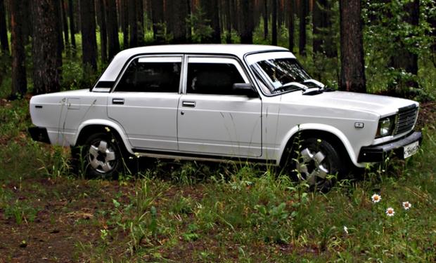 На Рахівщині двоє молодиків викрали автомобіль і заховали його в лісі