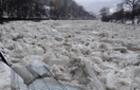 На деяких річках Закарпаття почався льодохід (ВІДЕО)