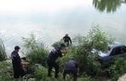 Біля Рахова жінка на Шкоді з'їхала в річку