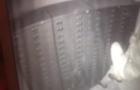 Оприлюднено відео проникнення грабіжників у VS Банк в Мукачеві (ВІДЕО)