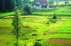 На Тячівщині через підробку документів комунальна земельна ділянка стала приватною