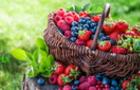 Чому нашому організму необхідні антиоксиданти і як їх отримати
