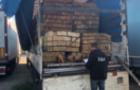 Через закарпатську митницю вивозили деревину за підробними документами