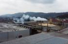 Деревообробні підприємства Рахівщині можуть працювати на закордонні ринки