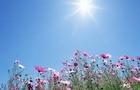Синоптики: На Закарпаття прийшла тепла і сонячна погода, яка утримається весь наступний тиждень