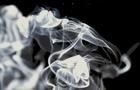 На Берегівщині ціла родина з 5-ти чоловік отруїлася чадним газом і була госпіталізована