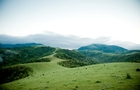 В районі гори Менчул на Хустщині загинув чоловік