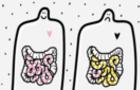 Нижчий розум: Як кишкові бактерії керують мозком