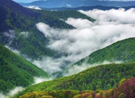 Профанація: Закарпатська влада не знає, як розвивати туризм в області