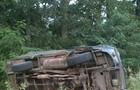 На Закарпатті п'яний чоловік викрав автомобіль ГАЗ і перекинувся в кювет