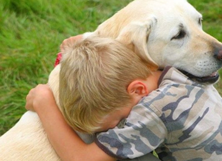 Найдружелюбніші породи собак