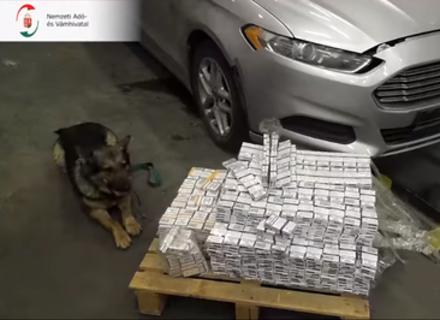 """Угорські прикордонники ПП """"Загонь"""" завдяки собаці знайшли у одній з автівок контрабандні сигарети"""