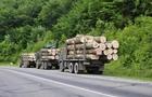 Закарпатські лісівники рубають лісу менше, а грошей до бюджету йде більше